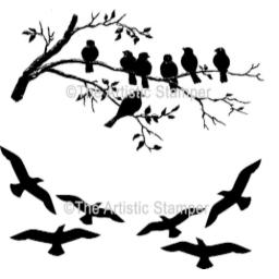Small but Beautiful Birds (cut out and mounted on cling cushioning)