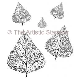 skeleton-leaves-x-5-cut-out-and-mounted-on-cling-foam-5035-p.png