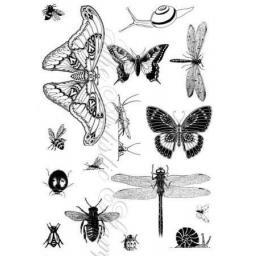 insects-and-butterflies-1-a5-cut-out-and-mounted-on-cling-cushioning-182-p.png