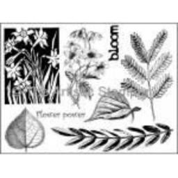 botanical-2-a5-cut-out-and-mounted-on-cling-cushioning-285-p.png