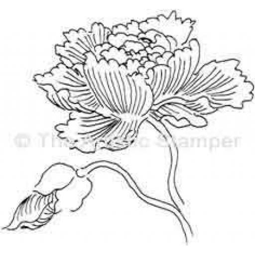 peony-cut-out-and-mounted-on-cling-cushioning-347-p.jpg
