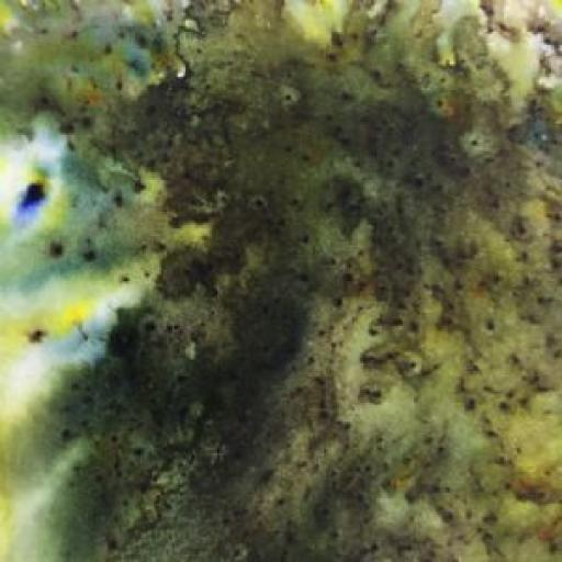 PaperArtsy - Infusions Dye CS16 - Olive Tree