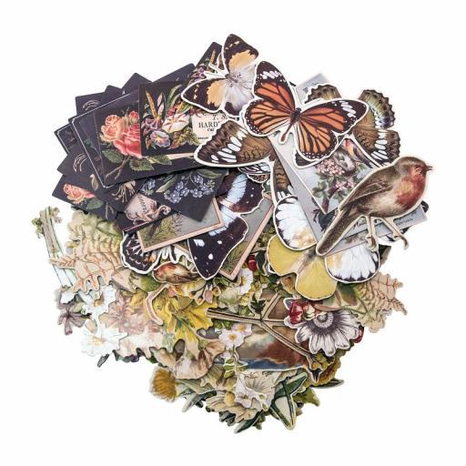 tim-holtz-ideaology-botanical-layers-[2]-8603-1-p.jpg