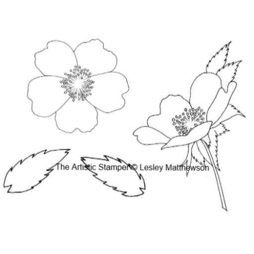 dog-rose-lesley-matthewson-cut-out-and-mounted-on-cling-cushioning-4698-p.png
