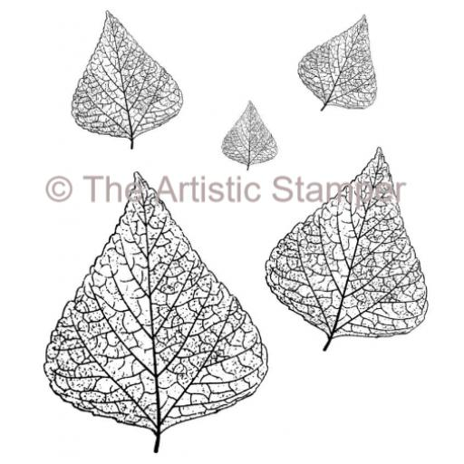 Skeleton Leaves x 5 ( cut out and mounted on Cling Foam)