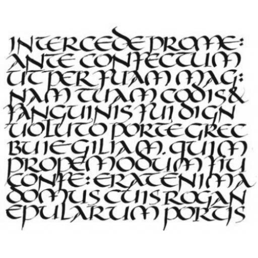 Calligraphic Mat 1 size 7 x 9.5cm ( cut and mounted on cling cushioning )