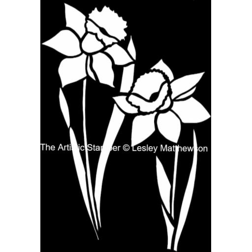 "Daffodil 6"" x 6"" © Lesley Matthewson"