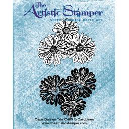 cape daisies trio c 405.jpg