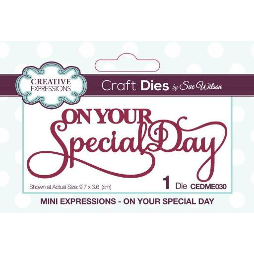 Creative Expressions Sue Wilson Mini Expressions On Your Special Day Craft Die