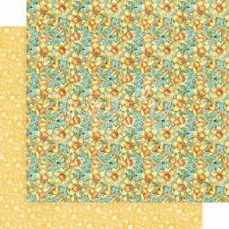 GR4502079 daffodil dance.jpg