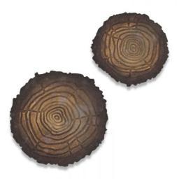 19_ch4_664232_tree_rings_low_res_1.jpg