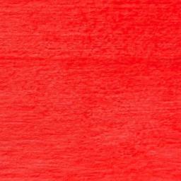 CSNPRED-Rio-Red-RGB_1.jpg