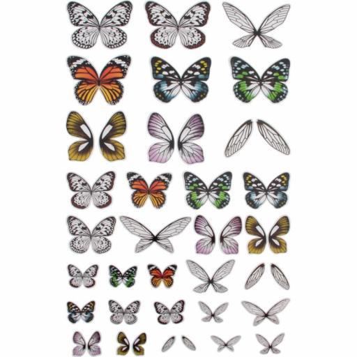 idea-ology-tim-holtz-transparent-wings-72pcs-th937 2.jpg