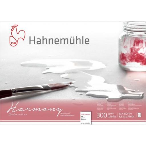 Hahnemuhle -Harmony Watercolour 300gsm Cold Pressed Block A4 x 12 Sheets
