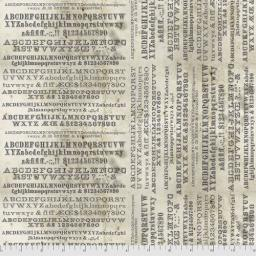 Typography Parchment.jpg